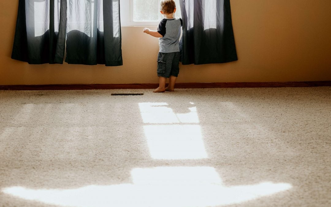 Switching To Green Cleaning: Natural Carpet Cleaner & Deodorizer